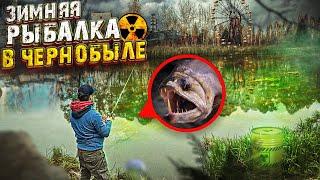 Зимняя Рыбалка в Припяти / Что это мы поймали?