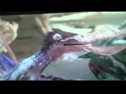 Dinosaur Revolution   Pterosaur Looney Tunes