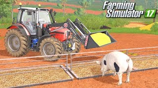 Hodowla świń - Farming Simulator 17 [PLATINUM]   #20
