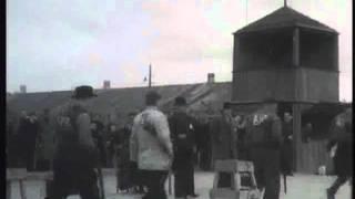 Стендовая стрельба 1951 г