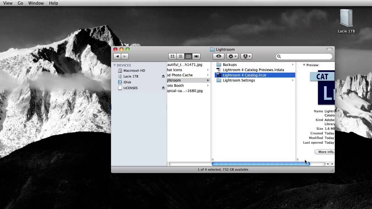 Lightroom delete catalog previews
