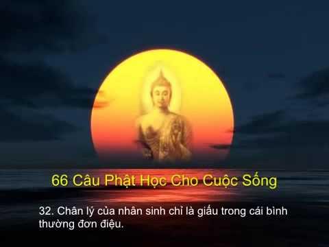66 câu Phật học cho cuộc sống để ngộ ra chân lý cuộc đời