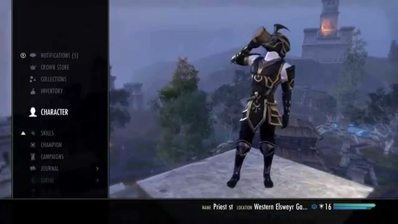 Eso Dual Wield Build