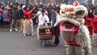 Chinese New Year in Rotterdam Year of the Dragon