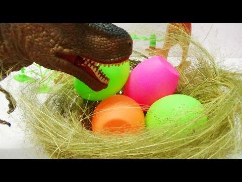 Khủng long bạo chúa ấp trứng - T Rex Hatching Dinosaur Eggs