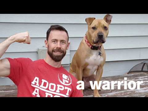 Thumbnail: State Farm® Cares About Canine Companions