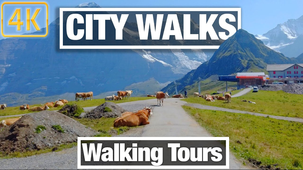 City Walks: Travel the World from Home While you Exercise