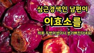 선인장 열매#천년초를  3개월 더  두었더니  생긴결과