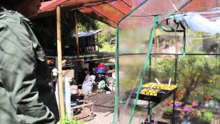 Permaculture 2015 Living In The Future Ecovillages 54   Djanbung Gardens Permaculture