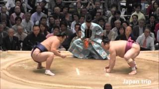 稀勢の里 vs 宝富士の取組。 2016大相撲春場所2日目。 勢 vs 宝富士の取...