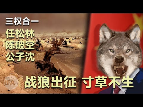 战狼出征、寸草不生|三权合一