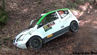 37° Rally 2 Valli 2019 - CRASHES, MAX ATTACK & MISTAKES