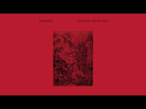 Sleepies - Natural Selection