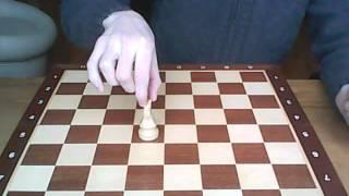 Шахматы для начинающих 3 урок : пешки и конь