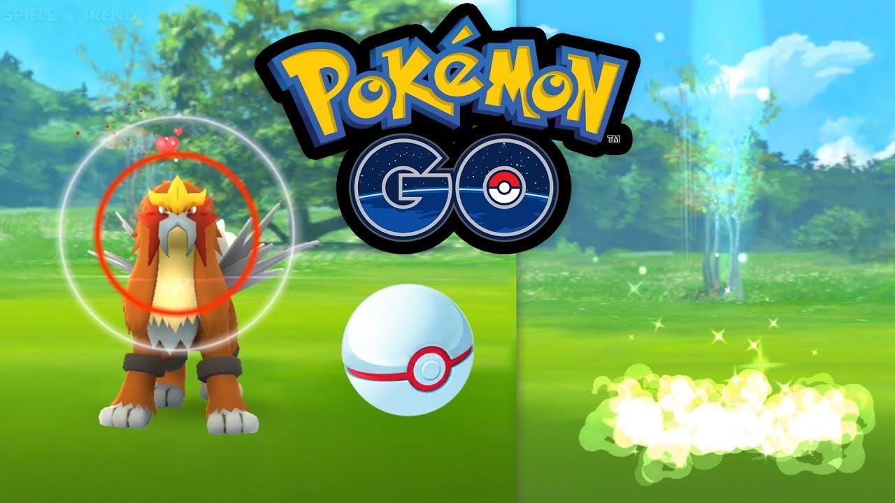 Pokemon go netzwerkfehler