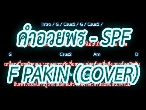 Photo of 🎸คอร์ดเพลง🎸คําอวยพร – SPF _ F PAKIN (COVER) [เยี่ยมมาก