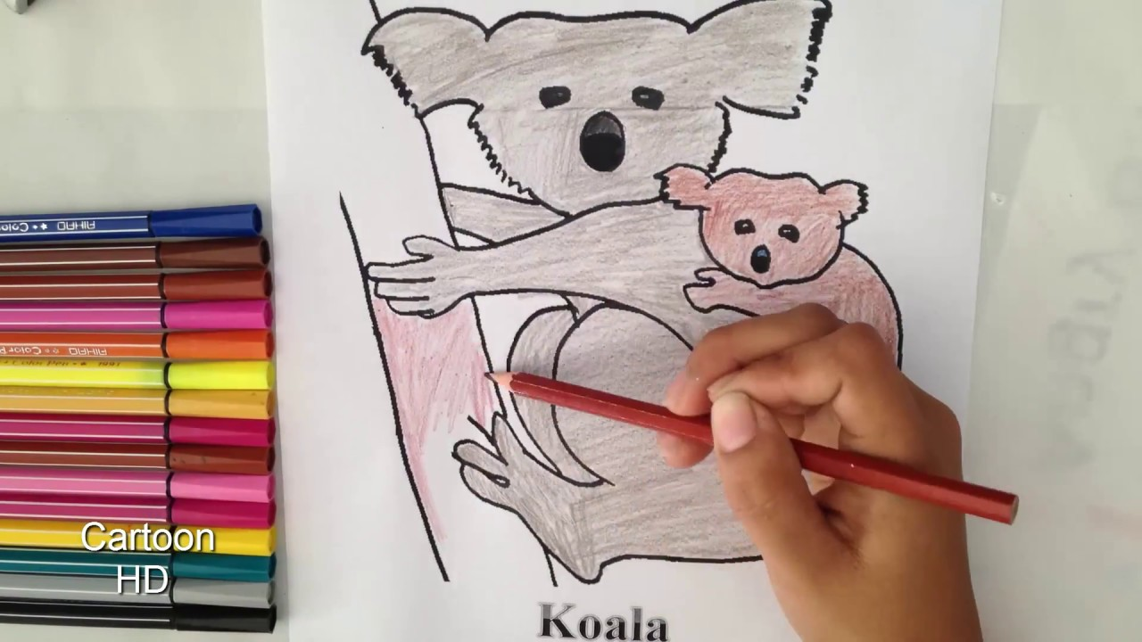 Koalas Coloring Pages For Kids Koalas Coloring Pages Cartoon Hd - Koalas-coloring-pages