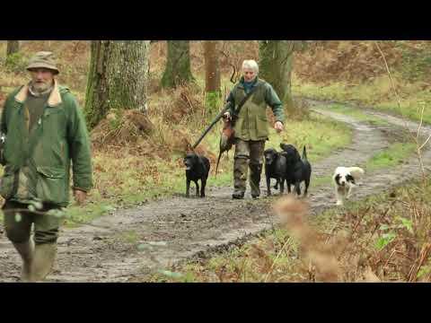 ShotawayFilms Game & Various Shooting. '' A Walk In The Wood'' HD 1080p