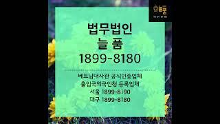 법무법인늘품1899-8190 베트남국제이혼 대구국제이혼…