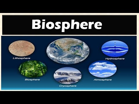 1.6 Biosphere (Levels of Organization of Ecology): Environme