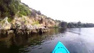 Hobie Kayak Cruising On The Swan River.