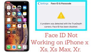 a problem was detected with the truedepth camera. face id has been disabled