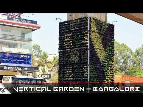 VERTICAL GARDEN - Bangalore Metro pillars to Beat Pollution