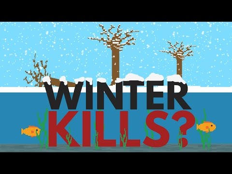 Why Doesn't Winter Kill All The Fish And Plants?