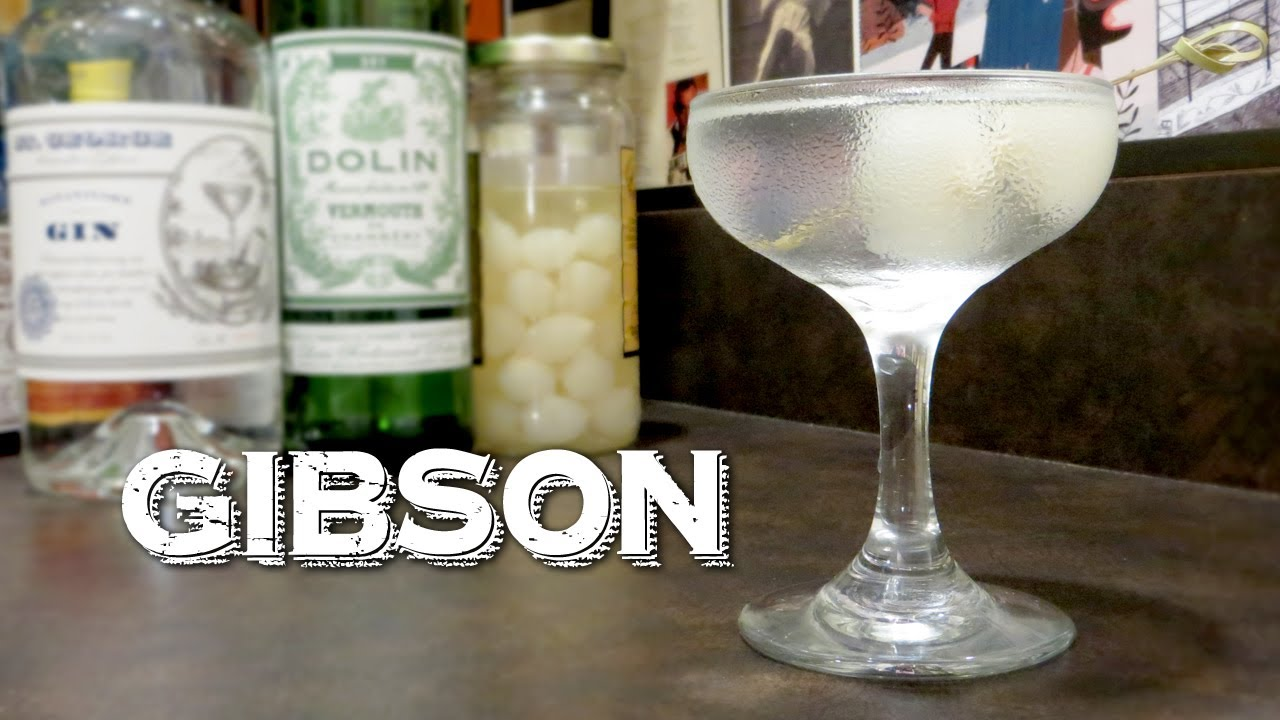 recipe: gibson vs martini [29]