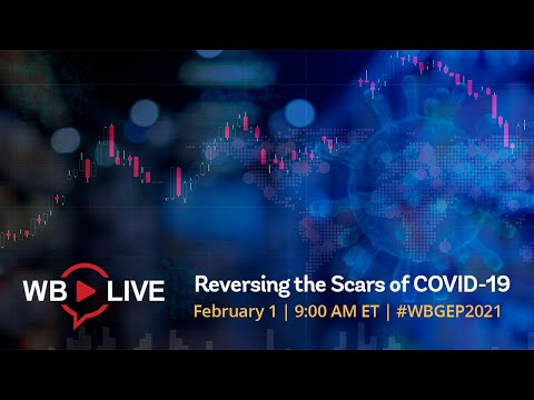 Global Economy: Reversing the Scars of COVID-19 Towards a Robust, Sustainable, and Equitable Growth