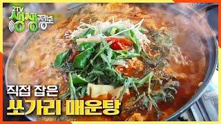 [2TV 생생정보] 고추장,된장부터 물고기까지 직접 잡는다! 쏘가리 매운탕 KBS 20201022 방송