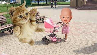 Смешные котята Гуляем с Беби Бон в коляске Смешные Животные для Детей Кошка Baby Born doll