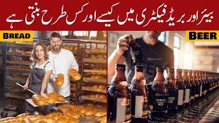 Beer Making Process In Factory Urdu&Hindi | Door Bini