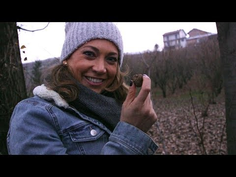 Italian Truffles | ABC News