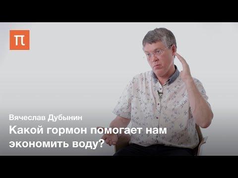 Мозг и жажда — Вячеслав Дубынин