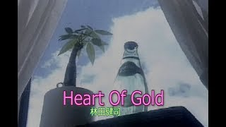 林田健司 - Heart Of Gold