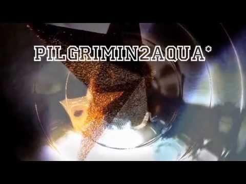 AngryFungi V's 'Pilgrimin2Aqua' (Vj-Dj Mix)