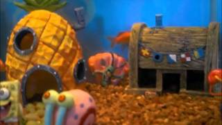 New 10g Aquarium With Spongebob Theme Fish Tank