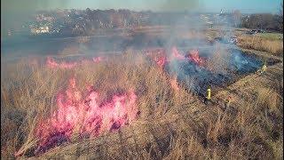 Controlled burn of prairie in Calvary Cemetery