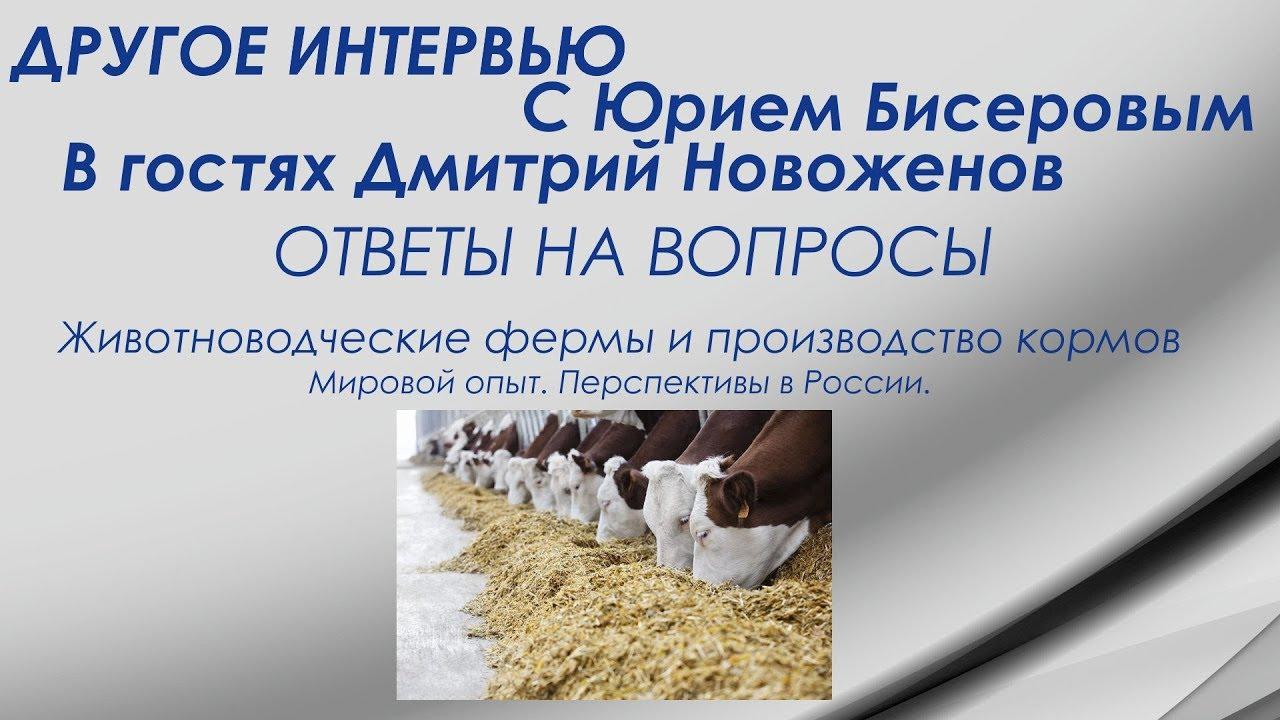 Другое интервью. В гостях Дмитрий Новоженов. Животноводство - эффективная экспортная отрасль?