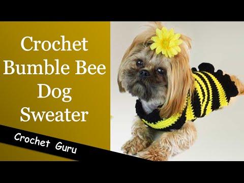 Crochet Dog Sweater - Easy Pattern for Beginners - YouTube