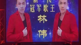 新-代冠军歌王 林伟