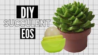 Diy Succulent Eos Lip Balm