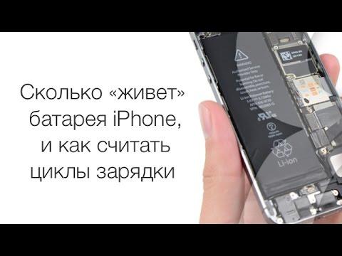 Сколько «живет» батарея iPhone, и как считать циклы зарядки | Яблык