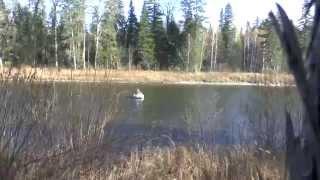 Хабаровский край, река Кур, сплав, рыбалка 2014.(, 2014-10-31T16:18:17.000Z)