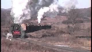中国 南岔 蒸気機関車撮影ツアー (1994年11月) Steam locomotive of China
