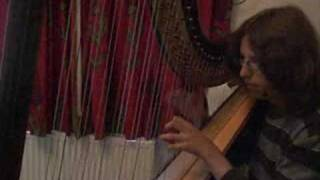 Sawdust & Diamonds ( Joanna Newsom Harp Cover )