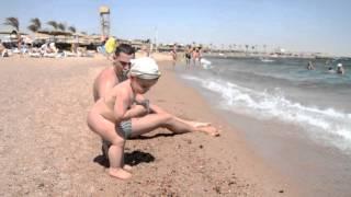 Golden 5 Emerald Resort 5* пляж отеля Голден 5 Емеральд Хургада Египет песок и медузы(Хочу показать какой на самом деле пляж у известного Египетского отеля Емеральд сети Голден 5. Пляж очень..., 2016-04-07T08:56:16.000Z)