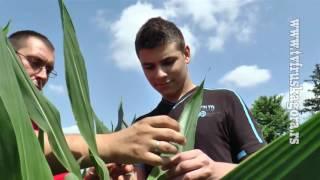 Dan polja u Poljoprivrednoj skoli u Rumi