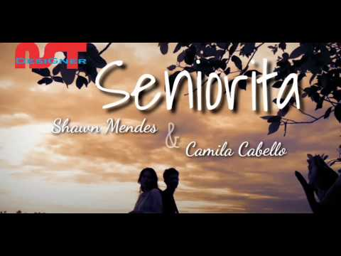 senorita_-shawn-mendes-feat-camila-cabello-(lirik-dan-terjemahan)